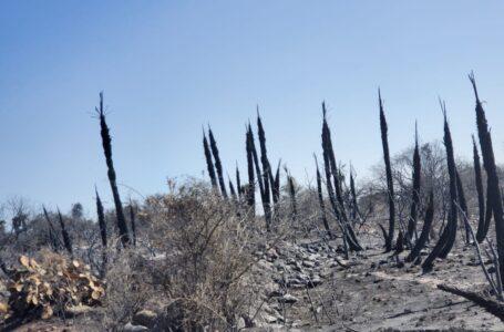 Incendios: no se observan focos activos en Traslasierra