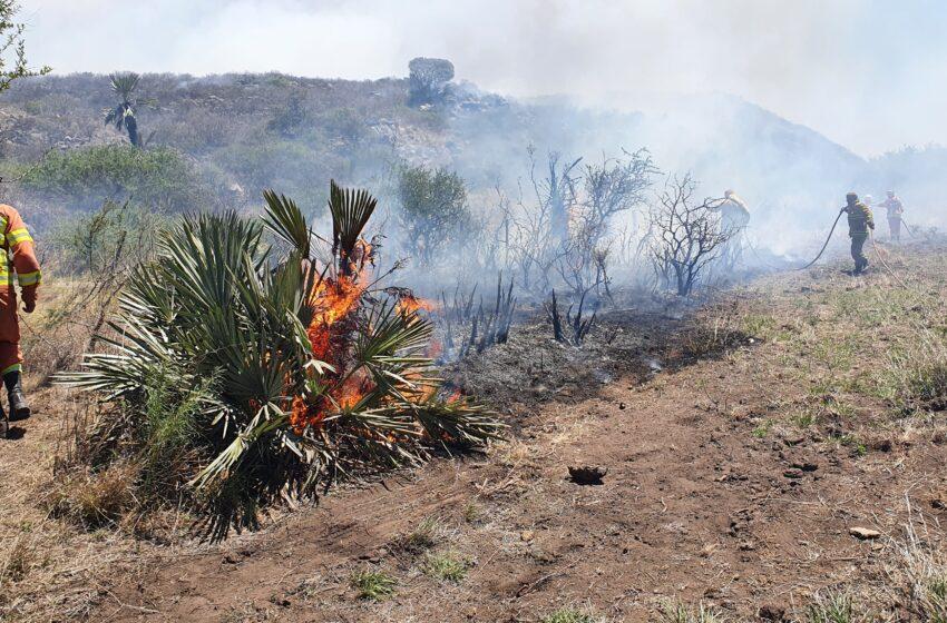Punilla: más de $11 millones para productores afectados por incendios